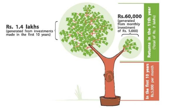 Building wealth is like growing a tree