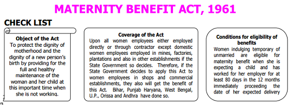 Excerpt of Maternity Leave Overview